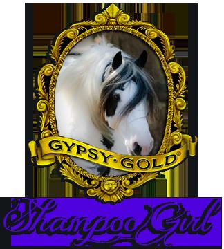N-ShampooGirl
