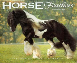 Latcho Drom Horse Feathers Calendar
